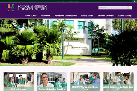 School of Nursing and Health Studies website